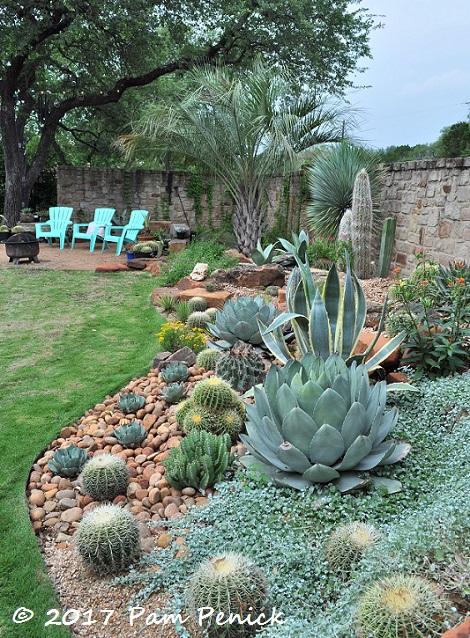 Agave And Cactus Splendor In The Garden Of Matt Shreves
