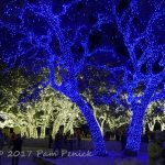 The twinkliest town in the Hill Country