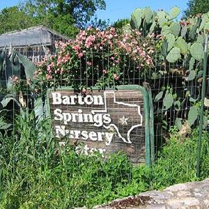 Barton Springs Nursery