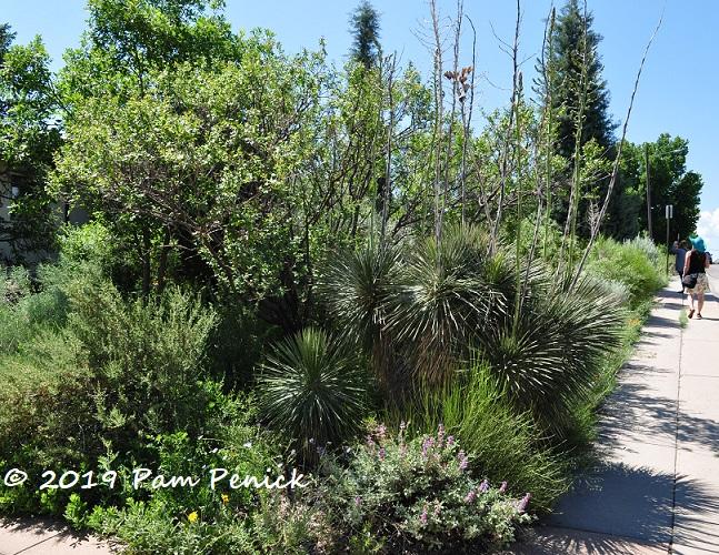 A Dryland Garden Inspired By Mother Nature Denver Garden Bloggers